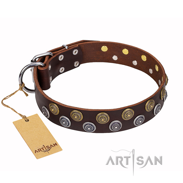 Stunning full grain natural leather dog collar for handy use
