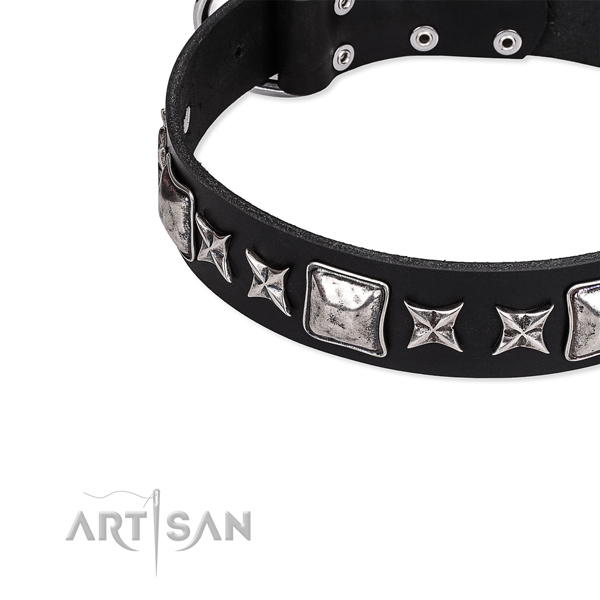 Leather dog collar with embellishments for comfortable wearing