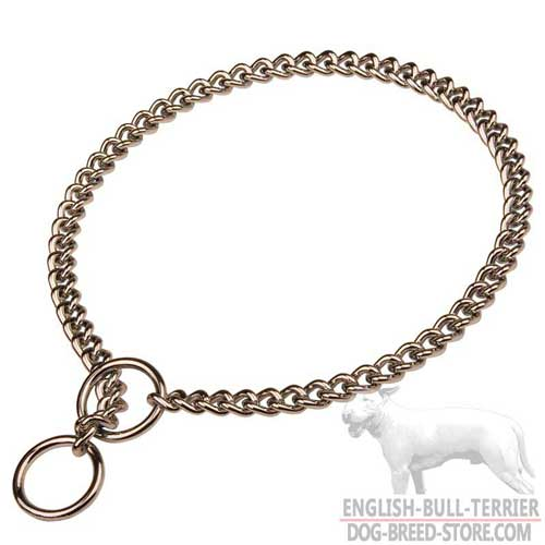 Corrosion Resistant English Bull Terrier Choke Collar