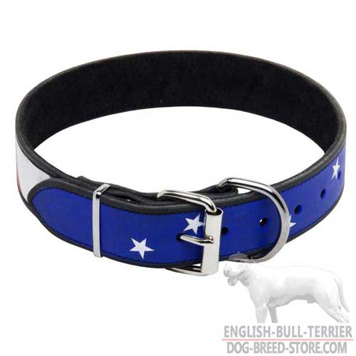 Custom Painted Leather Dog Collar for Bull Terrier