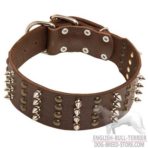 Spiked and Studded Wide Leather Dog Collar for English Bull Terrier Walking