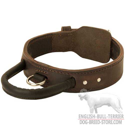 Two Ply Leather Dog Collar With Strong Handle and Brass D-Ring
