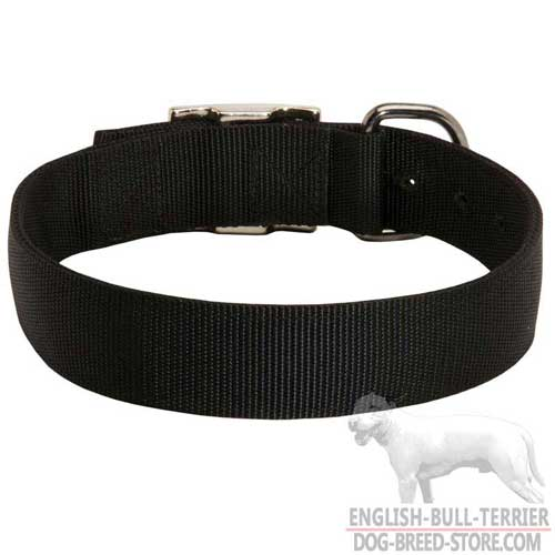 Nylon Dog Collar for English Bull Terrier Training