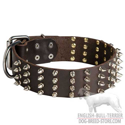 Leather Dog Collar for Bull Terrier breed, 4 rows of spikes
