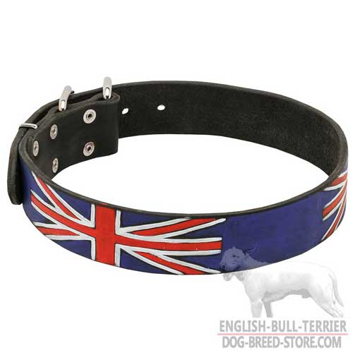 English Bull Terrier Leather Collar Wanterproof Paints