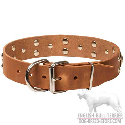 Belt buckle of Bull Terrier dog collar