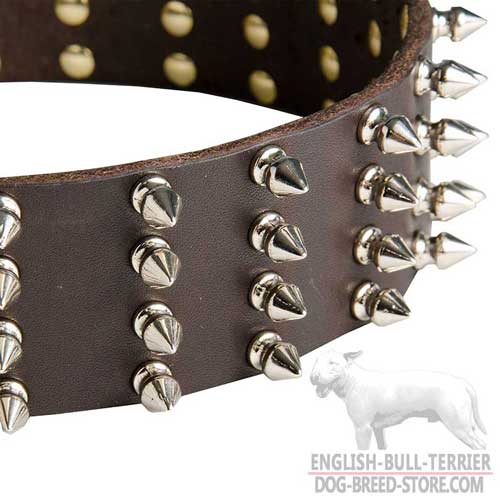 Dog collar with spikes for English Bull Terrier Walking