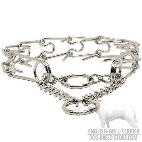 Durable Dog Collar for English Bull Terrier