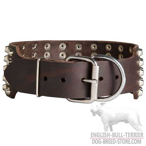 Bull Terrier Collar Studded with Extra Durable Buckle