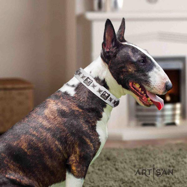 English Bull Terrier designer full grain natural leather collar with rust-proof buckle