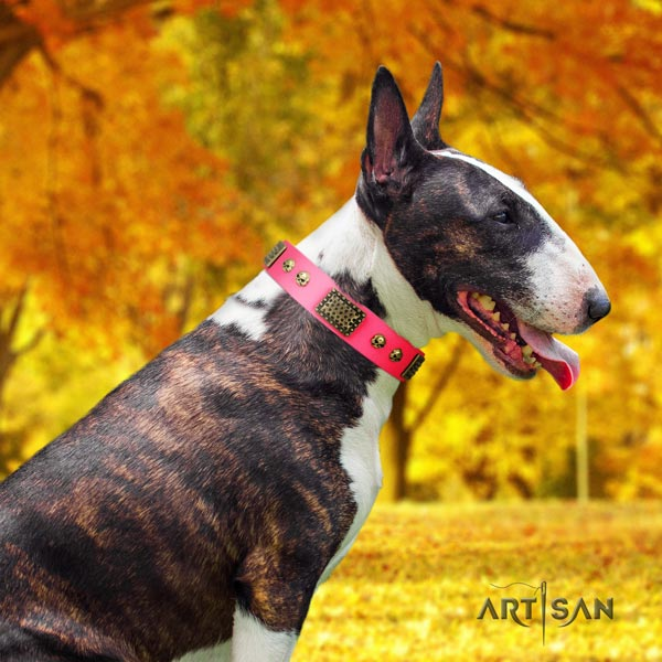 English Bull Terrier stylish design genuine leather collar with corrosion resistant d-ring