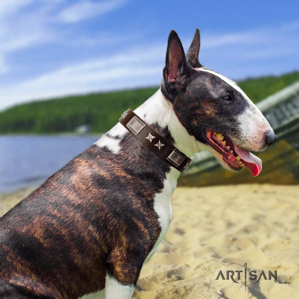 English Bull Terrier amazing full grain natural leather collar with rust resistant d-ring