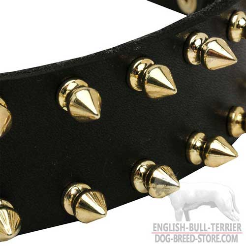 Dog collar with spikes for English Bull Terrier