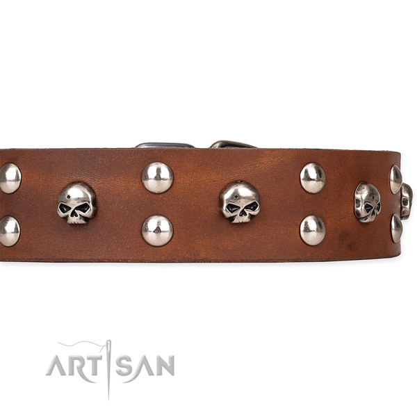 Genuine leather dog collar with worked out leather surface