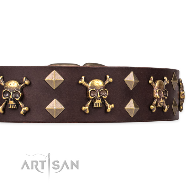 Full grain leather dog collar for walking