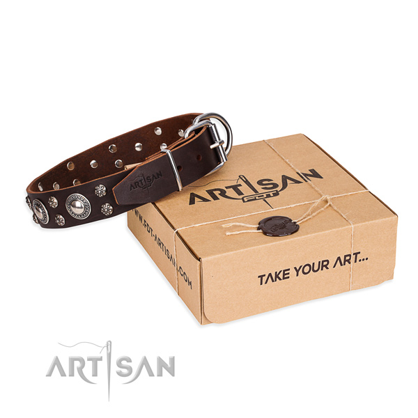 Casual leather dog collar with amazing studs