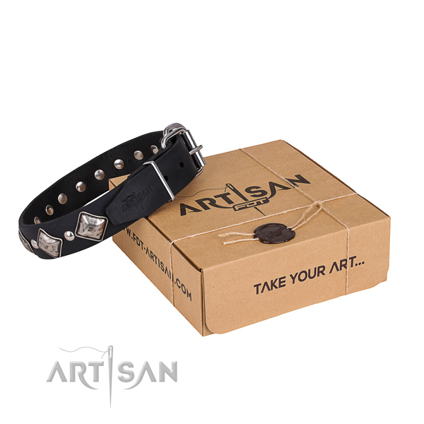 Day-to-day leather dog collar with fashionable decorations