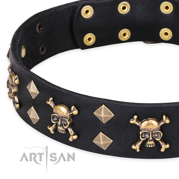 Casual style leather dog collar with astonishing adornments