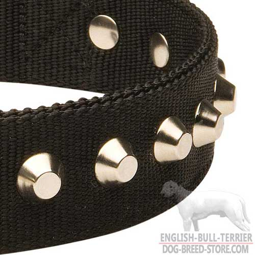 Rustless Steel Nickel Plated Studs On All Weather Nylon Dog Collar