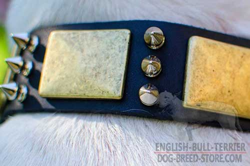 Rustless Plates And Spikes On Strong Leather Dog Collar