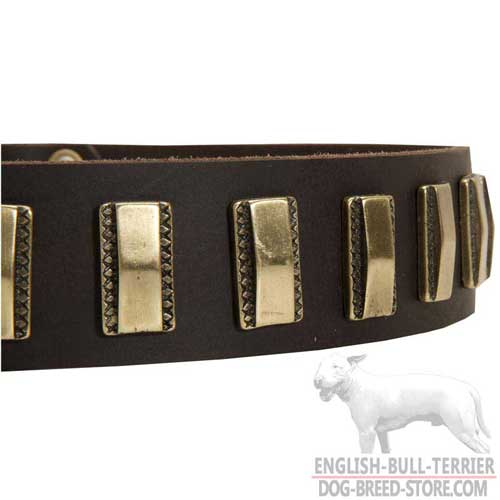Gold-Like Brass Plates On Leather Dog Collar for Everyday Use