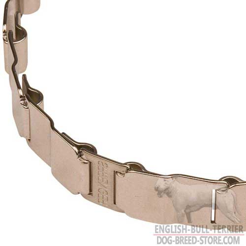 Durable Links on Stainless Steel Bull Terrier Pinch Collar