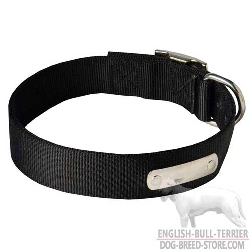 Training Nylon Bull Terrier Collar with ID Tag