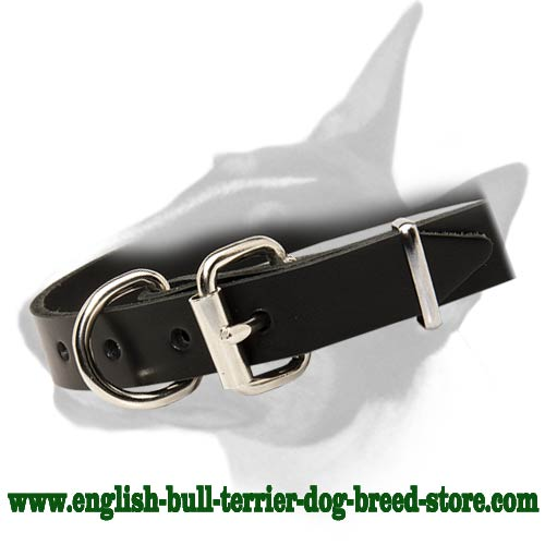 Training Leather Dog Collar with Reliable Fittings for Bull Terrier