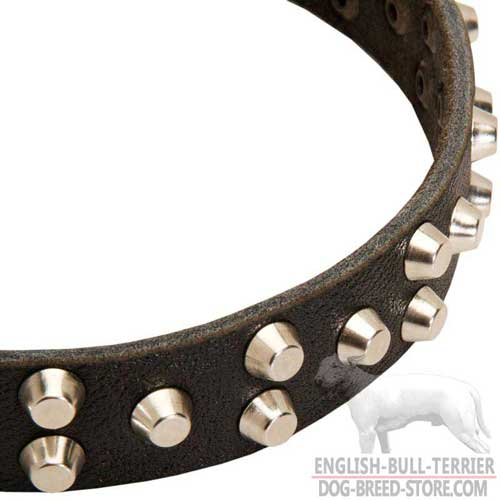 3 Rows of Studs on Stylish Leather Dog Collar
