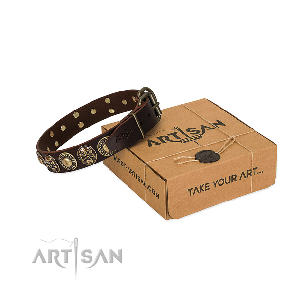 Studded full grain genuine leather dog collar for stylish walking