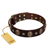 """Breaking the Horizon"" FDT Artisan Brown Leather English Bull Terrier Collar with Engraved Studs and Medallions"