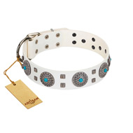 """Blue Sapphire"" Designer FDT Artisan White Leather English Bull Terrier Collar with Round Plates and Square Studs"
