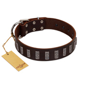 """Brown Lace"" Handmade FDT Artisan Brown Leather English Bull Terrier Collar for Everyday Walks"