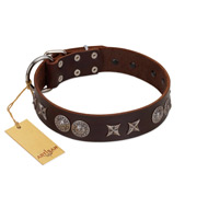 """Antique Style"" Designer Handmade FDT Artisan Brown Leather English Bull Terrier Collar"