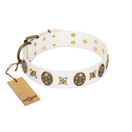 """Fads and Fancies"" FDT Artisan White Leather English Bull Terrier Collar with Stars and Skulls"