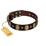 """Bronze Idol"" FDT Artisan Brown Leather English Bull Terrier Collar with Eye-catching Ovals and Small Studs"