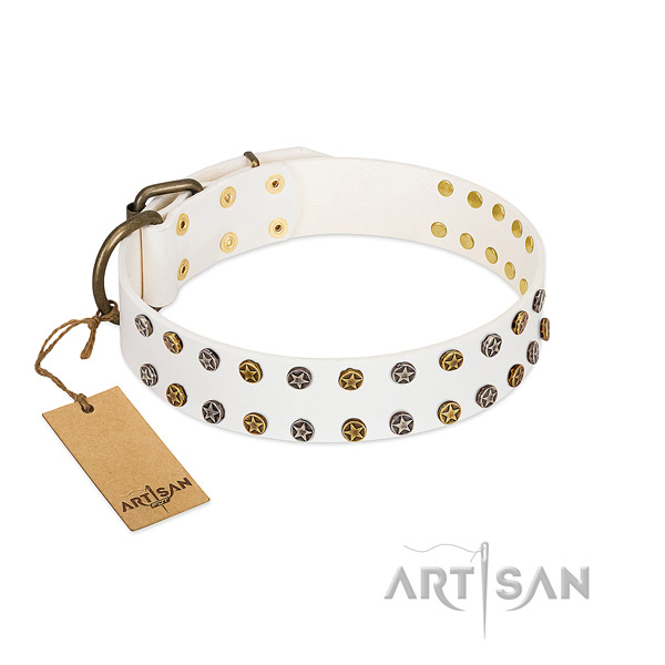 Inimitable natural leather dog collar with corrosion proof studs