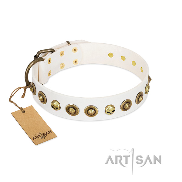 Genuine leather collar with extraordinary embellishments for your pet