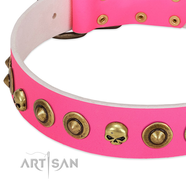 Significant studs on full grain natural leather collar for your pet