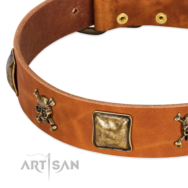 Amazing genuine leather dog collar with corrosion proof studs