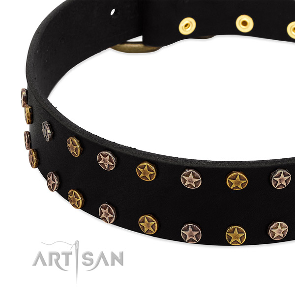 Amazing decorations on leather collar for your dog