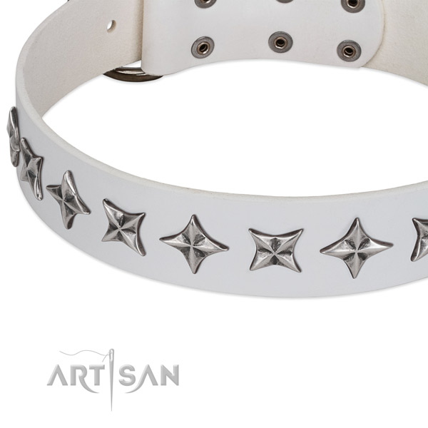 Comfy wearing studded dog collar of top notch leather