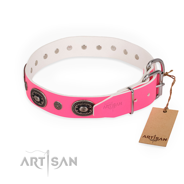 Fancy walking extraordinary dog collar with durable D-ring