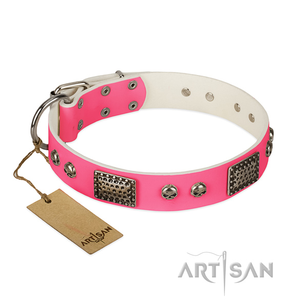Easy to adjust full grain genuine leather dog collar for walking your pet