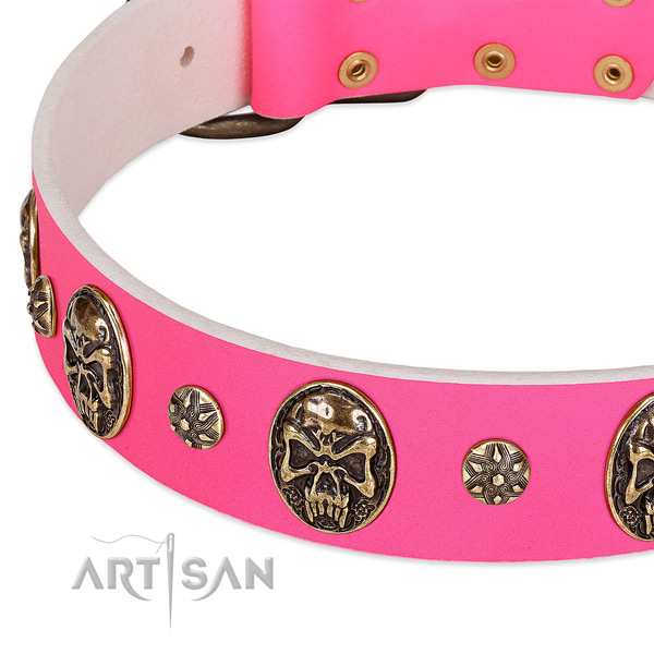 Easy wearing dog collar handmade for your attractive pet