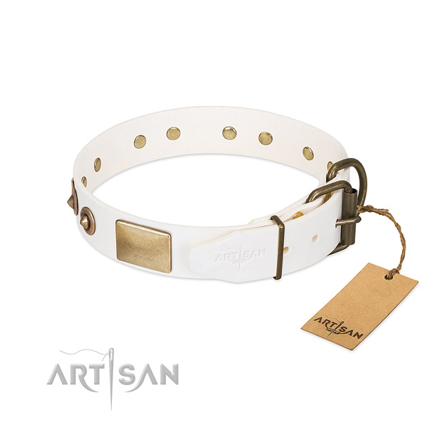 Rust-proof studs on full grain leather dog collar for your pet