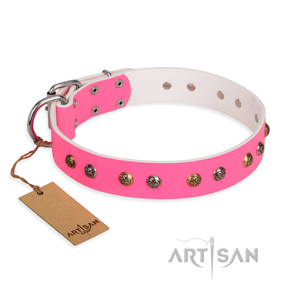 Everyday use unusual dog collar with durable D-ring