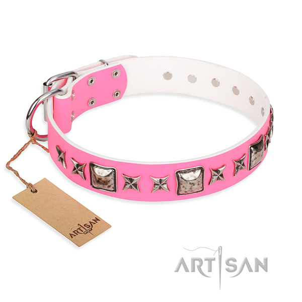 Full grain leather dog collar made of top rate material with strong fittings
