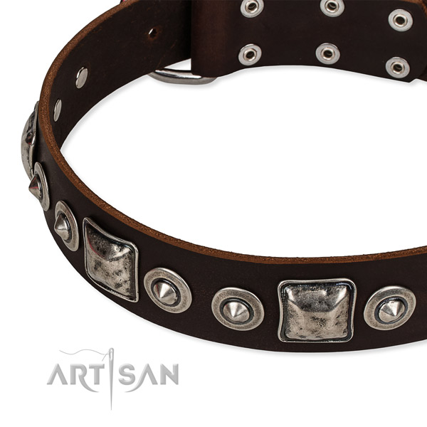 Natural genuine leather dog collar made of reliable material with adornments