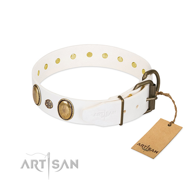Walking quality full grain leather dog collar with adornments